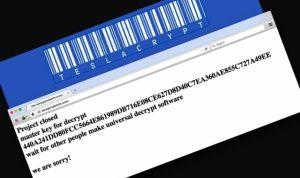 TeslaCrypt viruso kūrėjai atsiprašo: paviešintas dešifravimo raktas