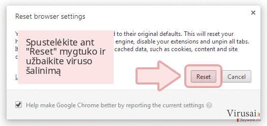 Spustelėkite ant 'Reset' mygtuko ir užbaikite viruso šalinimą