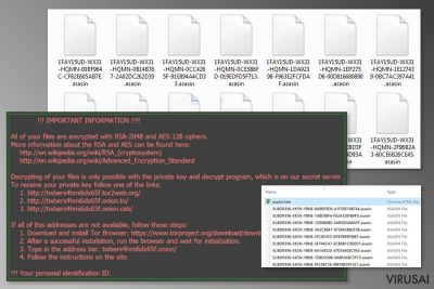 """""""Asasin"""" viruso užkoduoti duomenys"""
