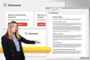 Cleanserp.net virusas