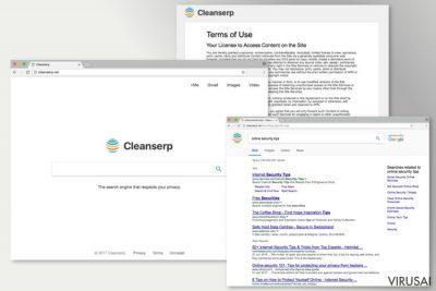 Cleanserp.net viruso pateikiami paieškos rezultatai