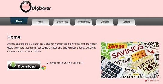 DigiSaver ekrano nuotrauka