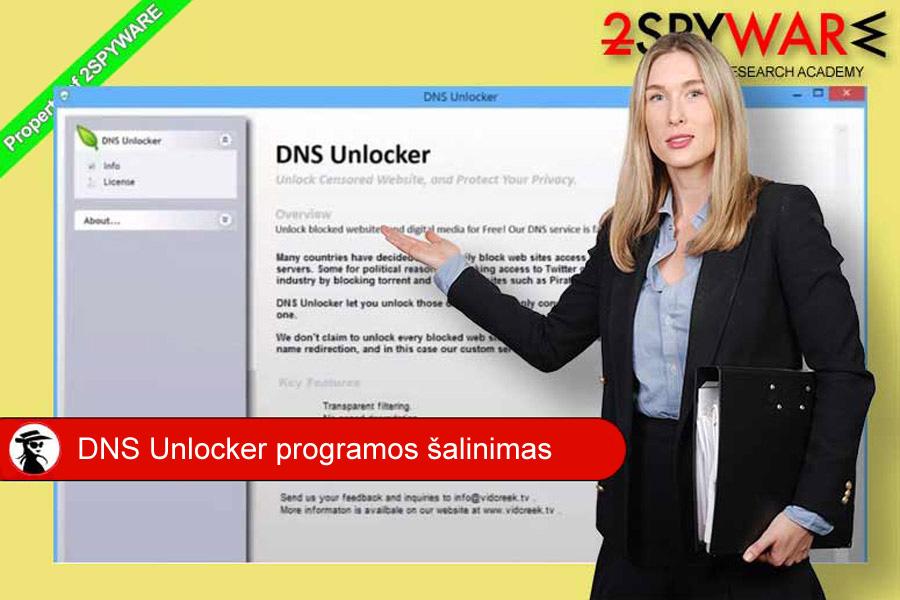 DNS Unlocker ekrano vaizdas