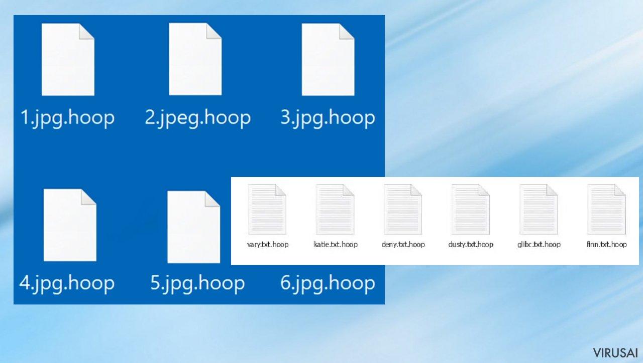 Hoop file virus