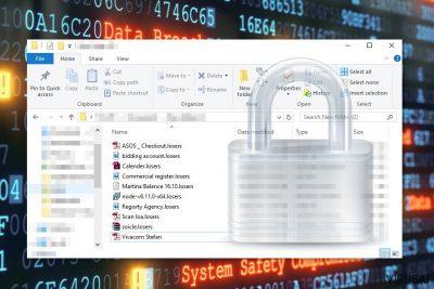 Losers kriptografinė programa užšifruoja kompiuterių vartotojų duomenis