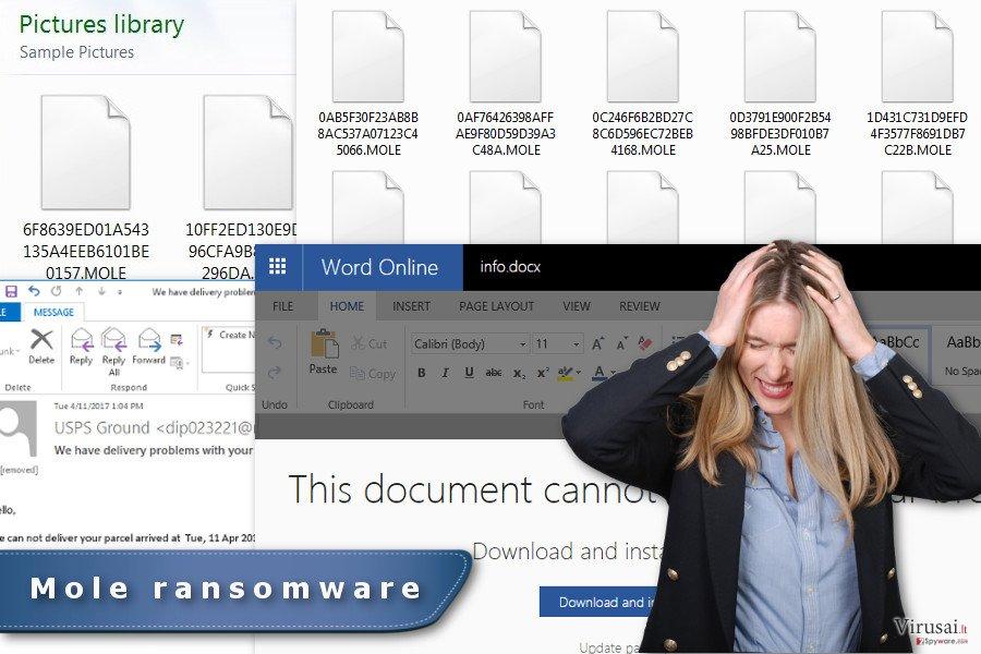 Mole ransomware virus