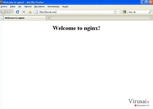 Nginx Virus ekrano nuotrauka