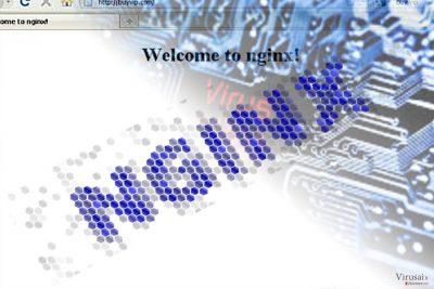 Nginx viruso pavyzdys