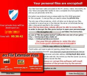 .ecc File Extension virus