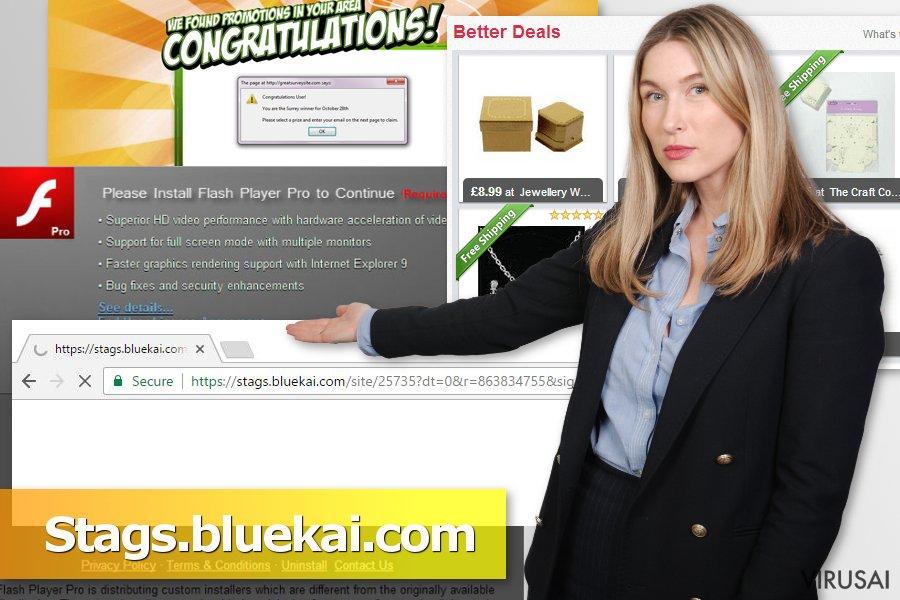 Stags.bluekai.com ekrano nuotrauka
