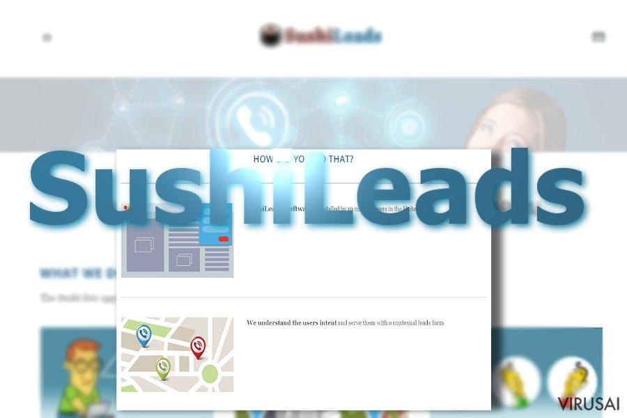 SushiLeads reklamos ekrano nuotrauka