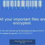 TeslaCrypt 2.0 ekrano nuotrauka