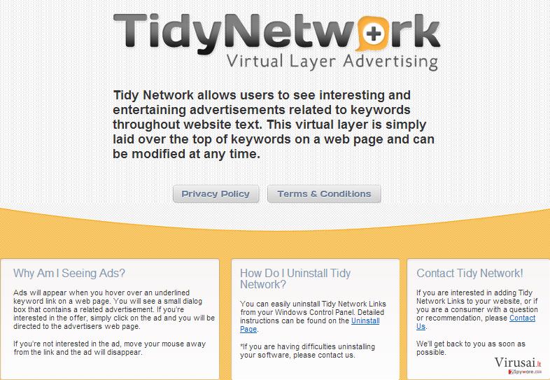 TidyNetwork.com ekrano nuotrauka
