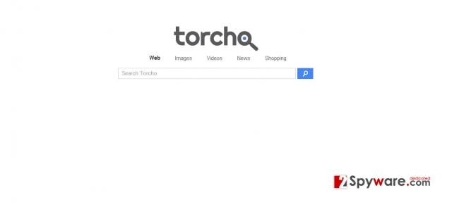 Torcho Web virusas ekrano nuotrauka