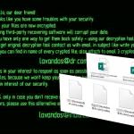 Wallet virusas ekrano nuotrauka