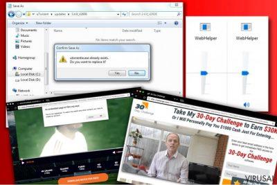 WebHelper reklamos