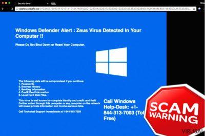 """""""Windows Defender Alert: Zeus Virus"""" pranešimo pavyzdys"""