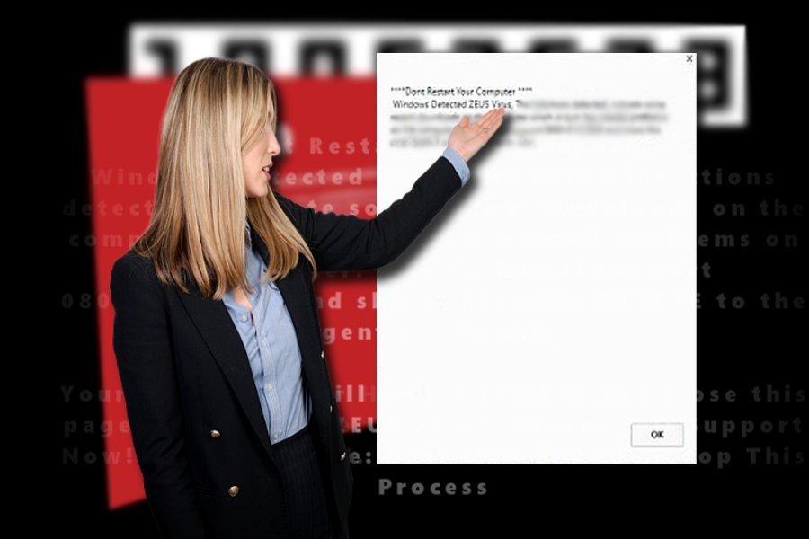 """""""Windows Detected ZEUS Virus"""" virusas ekrano nuotrauka"""