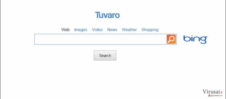 www-search.net ekrano nuotrauka