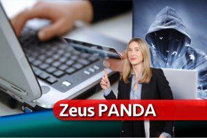 Zeus Panda virusas